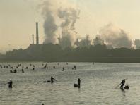 A sustentabilidade da industria do papel en Galiza vai máis alá do peche de ENCE en Lourizán