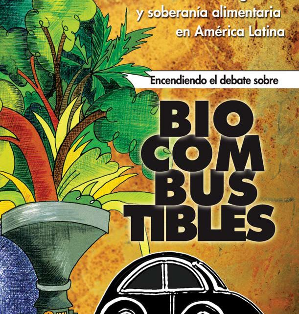 Biocombustíbeis: Alternativa?