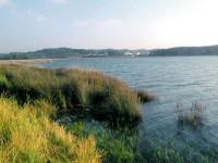 Verdegaia lanza unha campaña en defensa da Rede Natura 2000