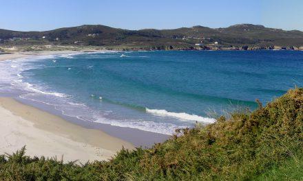 Axilidade na adquisición das zonas ambientalmente sensíbeis de Covas (Ferrol)