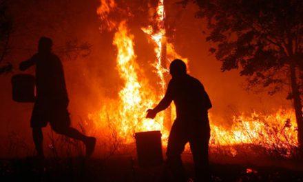 Incendios forestais 2006: a Fiscalía deixa en evidencia á Xunta