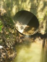 No Día Mundial da Auga, Verdegaia esixe unha unha mudanza radical na xestión dos recursos hídricos