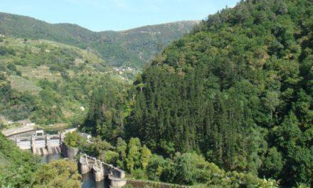 Alegacións á explotación hidroeléctrica San Pedro II