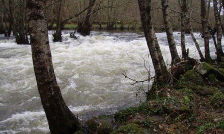 O roteiro polo río Arnoia convértese nunha aventura acuática