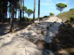 Admítese a trámite a denuncia de Verdegaia polas obras nas dunas de Punta Muxieiro, Cies