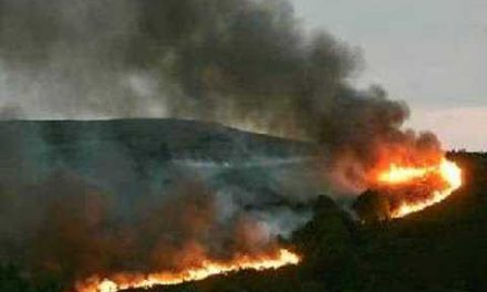 Luces e sombras da loita contra os lumes forestais