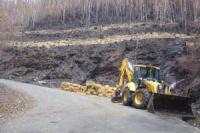 Colectivos ecoloxistas  amosan a nosa oposición  ao comezo das tallas nos terreos afectados polo incendio nas fragas do Eume