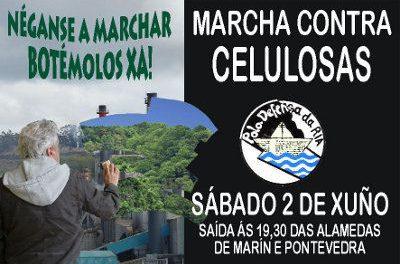 Marcha contra as celulosas o sábado 2 de xuño