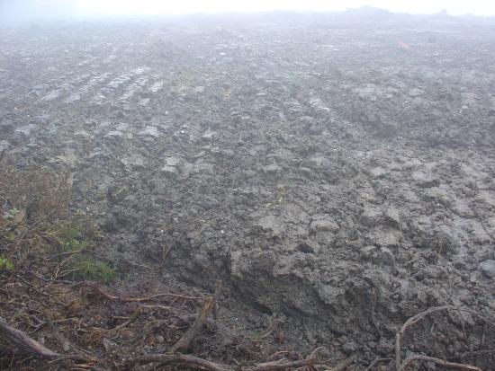A  Sociedade  Galega De  Historia  Natural e  Verdegaia  denuncian  catro  verquidos  de lodos de  depuradora  nas  Pontes  e  nas  Somozas