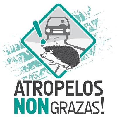 5 de xuño. 1º Aniversario da Campaña ATROPELOS NON, GRAZAS!