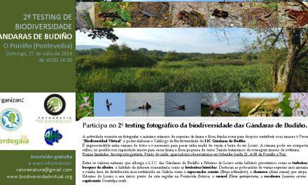 II Testing de Biodiversidade do LIC Gándaras de Budiño