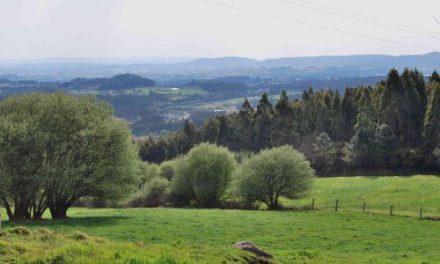 Verdegaia presentou alegacións ao Programa de Desenvolvemento Rural 2014-2020