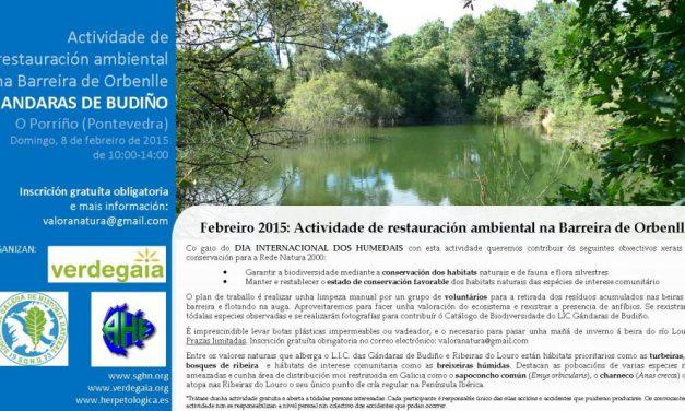 Actividade de restauración ambiental na barreira de Orbenlle dentro do LIC Gándaras de Budiño (O Porriño)