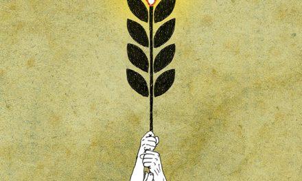 17 de abril, día da loita campesiña. 20 anos de resistencia!