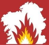 Os lumes de Portugal confirman que a deseucaliptización de Galicia é unha tarefa urxente