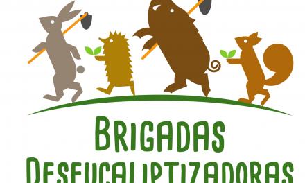 As Brigadas Deseucaliptizadoras rematan o 2018 cunha valoración moi positiva polo traballo desenvolvido