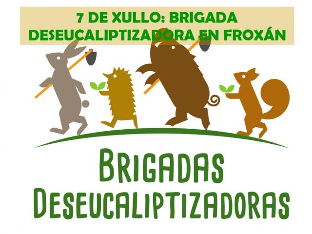 Brigada deseucaliptizadora en Froxán.