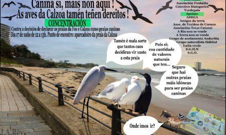 A Asociación Fontaíña, o Colectivo Matogueira e Verdegaia convocan unha concentración contra a declaración das praias da Calzoa e da Foz como praias caninas polos seus valores naturais