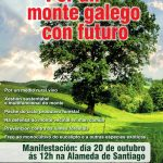 A plataforma 'Por un monte galego con futuro' convoca unha manifestación este domingo día 20 en Santiago.