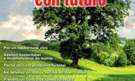 Por un monte con futuro: plantación de árbores nativas en Froxán o 19-O e manifestación en Compostela o 20-O.