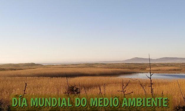 COMUNICADO ECOLOXISTA NO DÍA DO MEDIO AMBIENTE.