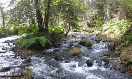 A exaltación da natureza no terceiro poema en galego coñecido do escritor romántico Pastor  Díaz.