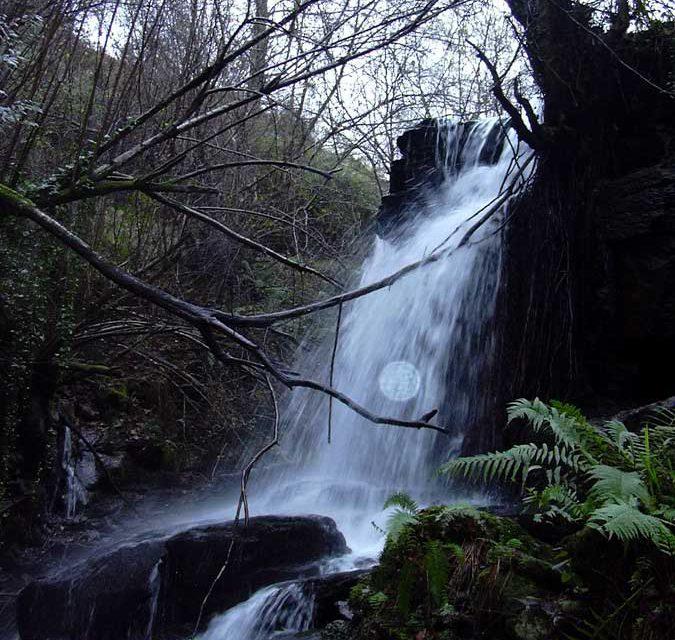 Verdegaia organiza un roteiro polo río Eifonso