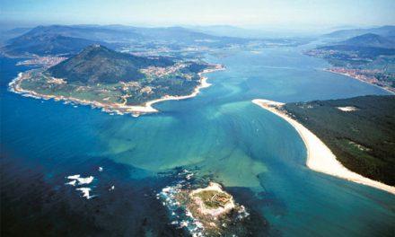Verdegaia-Vigo organiza un roteiro polo Esteiro do Miño o vindeiro día 23