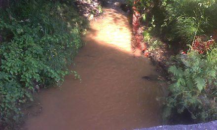 Brañas de Sar agredidas diante de expertos mundiais da auga en Compostela