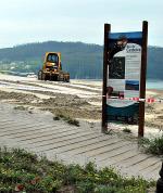 As obras de acondicionamento da praia de Cedeira alteran o ecosistema do areal