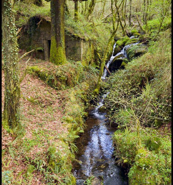 Roteiro polo sur do Forgoselo: Fontes do Belelle-Fontardión