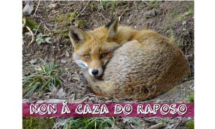Manifesto contra o campionato de caza do raposo do día 8 de febreiro de 2020.