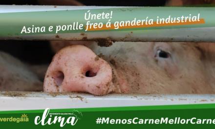 Moratoria á Gandaría Industrial #MenosCarneMellorCarne